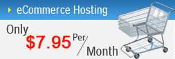 ecommerce web host ahmedabad, Linux Web hosting, Windows Web hosting, Ms Sql web hosting, Reseller Web hosting, web hosting services india